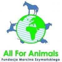 Logo organizacji - All For Animals. Fundacja Marcina Szymańskiego