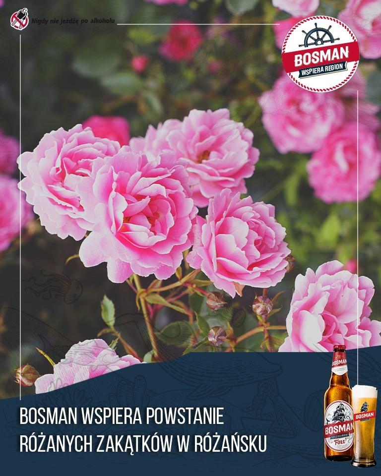 Najbardziej różana wieś w Polsce
