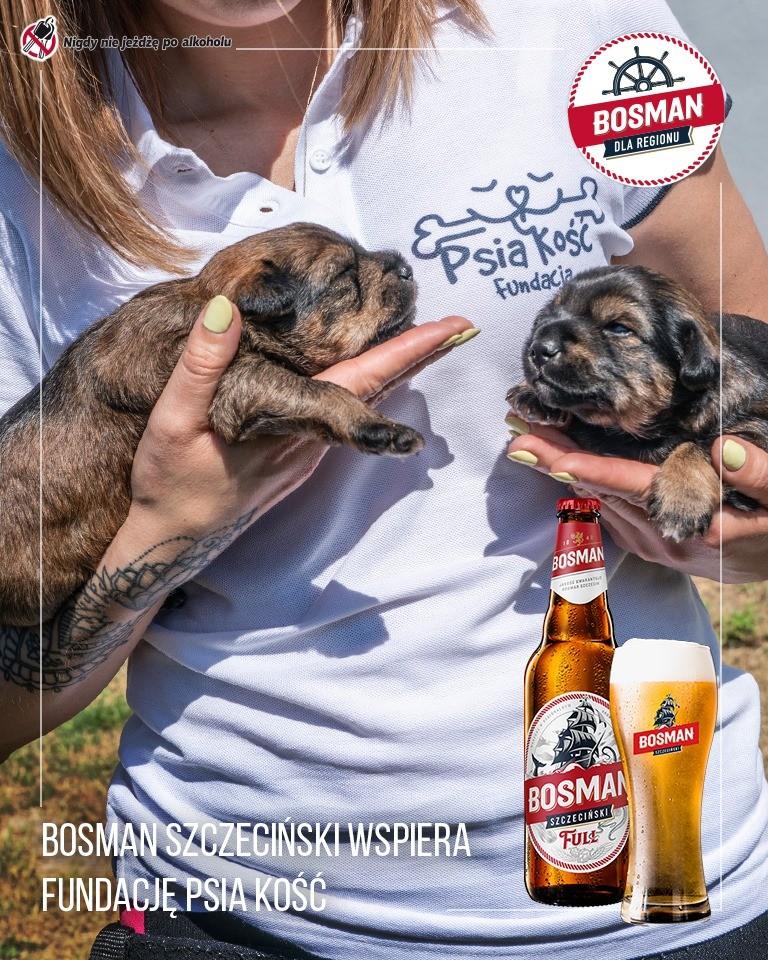 Schronisko dla Bezdomnych Zwierząt w Sosnowicach