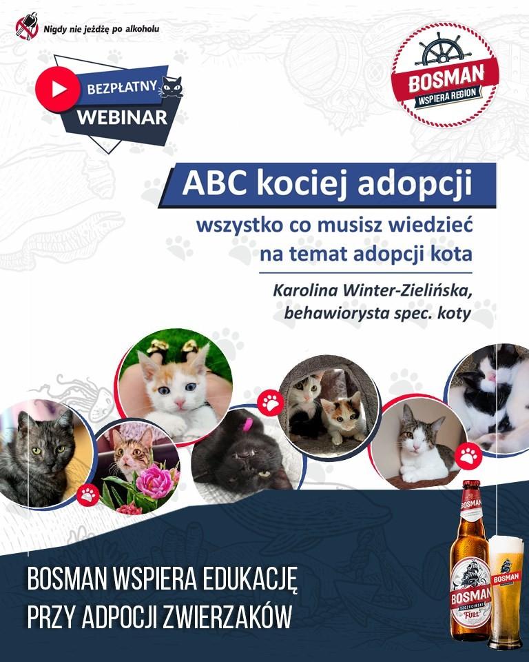 """WEBINAR pod tytułem """"ABC kociej adopcji"""""""